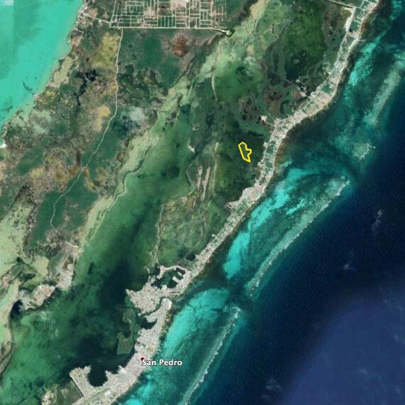 7.21 Acre Island inside Laguna de San Pedro on Ambergris Caye