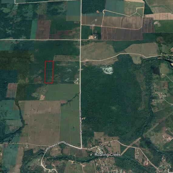 25 Acres of Fertile Farm Land in Belize| Belize Real Estate| Cayo District