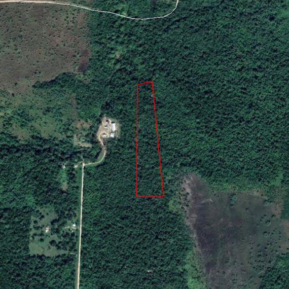 12.8 Acres near Hopkins with Creek | Property in Belize