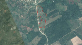 19.07 Acres in San Pedro Columbia| Southern Belize| Belize Real Estate