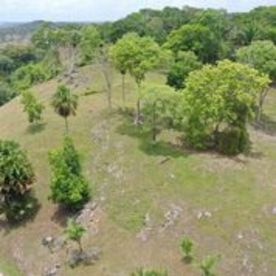 53 Acres with Amazing Views| Belize Real Estate