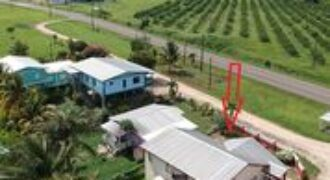 Beautiful 3 BD House with nestled in the valley| Southern Belize