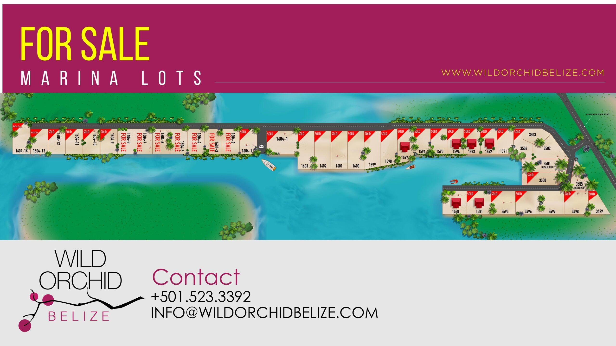 Wild Orchid Belize Real Estate