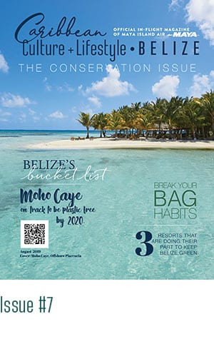 Caribbean Culture Lifestyle Magazine Cover Issue 7