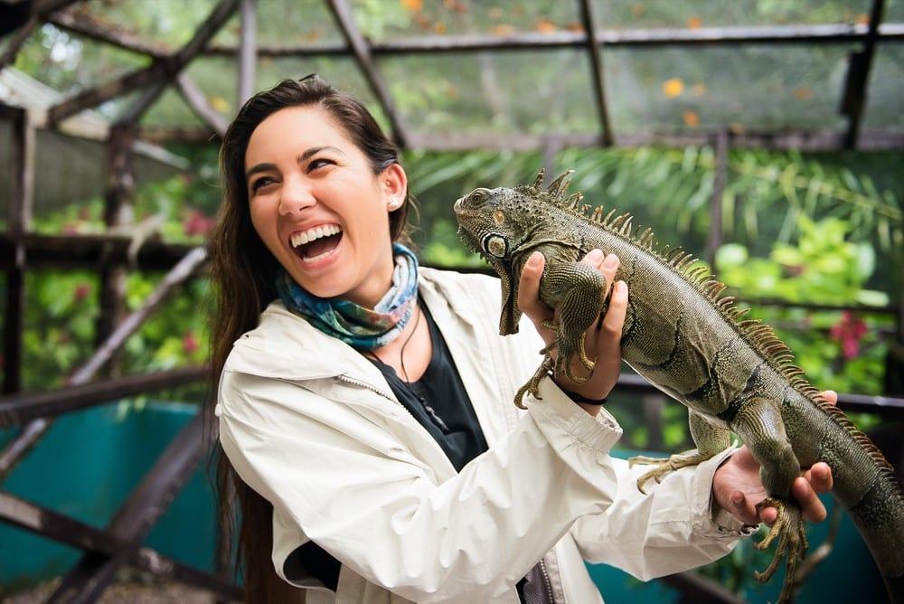 Green Iguana CONSERVATION PROJECT at San Ignacio Resort Hotel