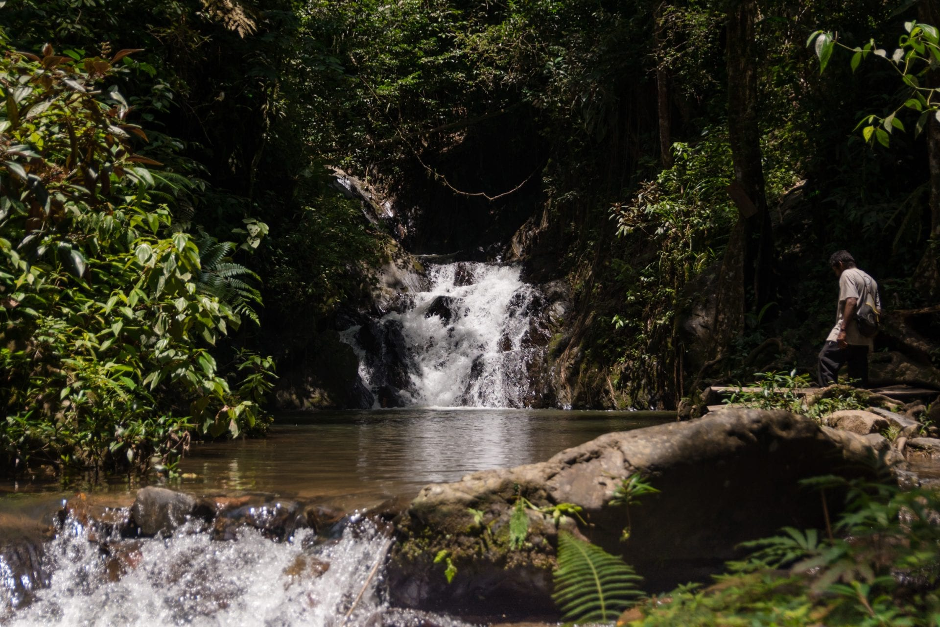 billy Barquedier National Park waterfall APAMO conservation
