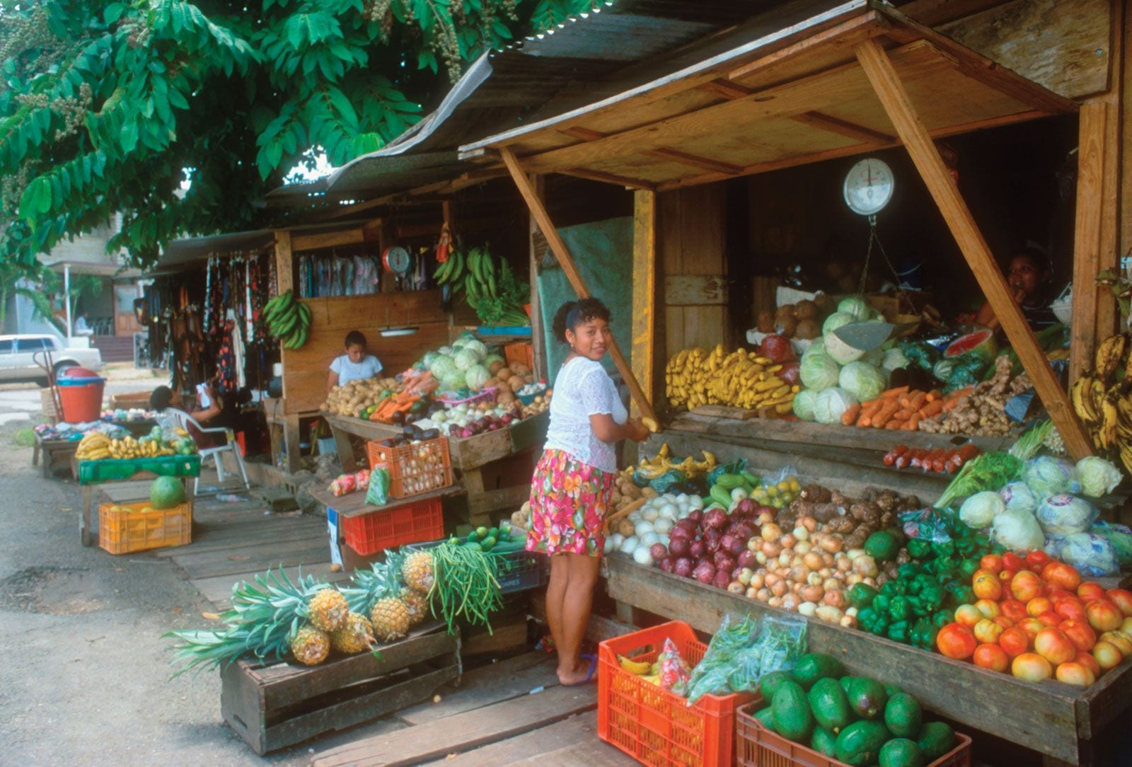 belmopan market day
