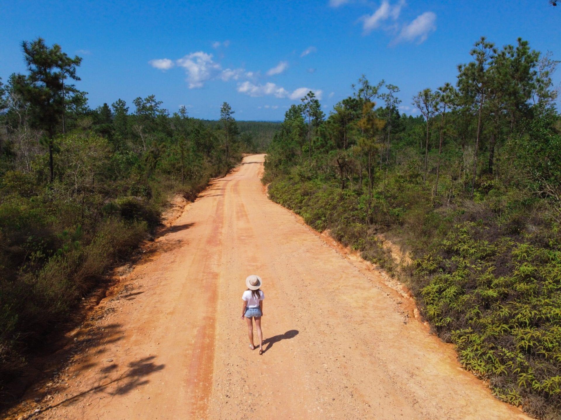 Mountain-Pine-Ridge ROAD BELIZE CARACOL