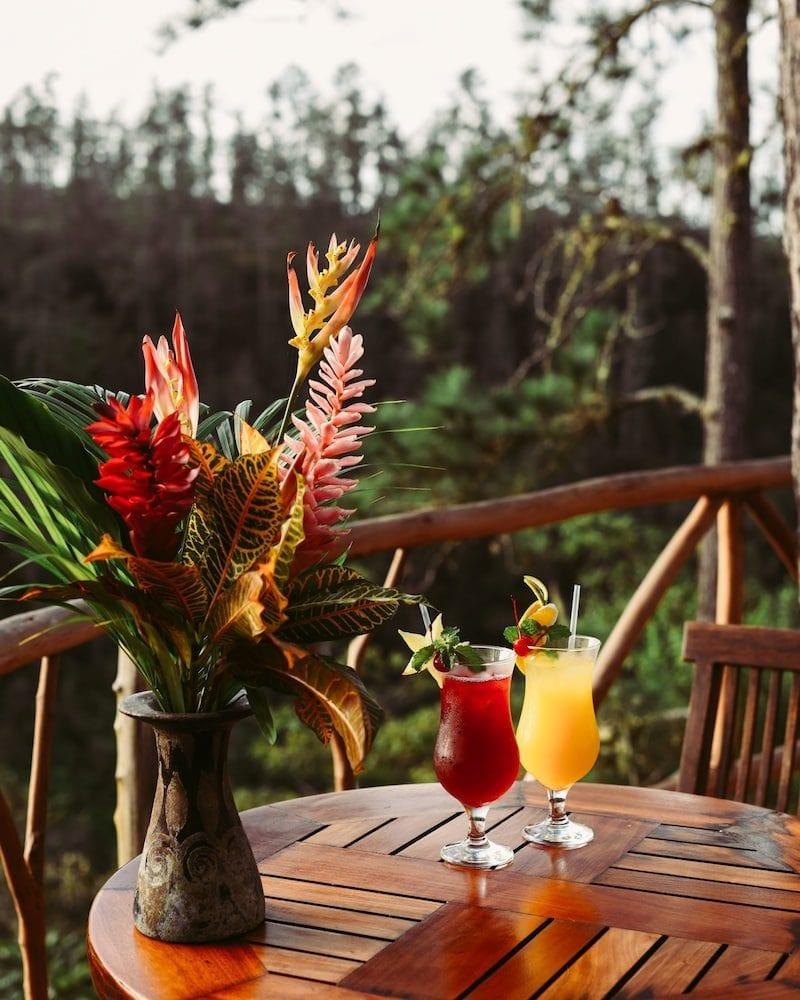GAIA DRINKS tropical patio