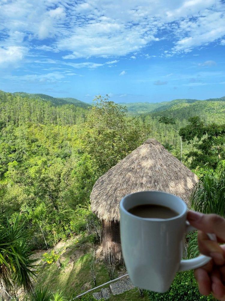GAIA Riverlodge coffee mountain pine ridge