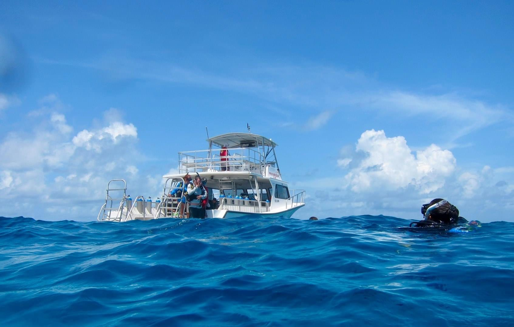 Splash Dive Center diving Caye by Carolee Chanona