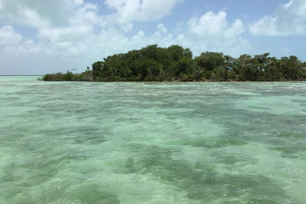 Water Caye private islands belize