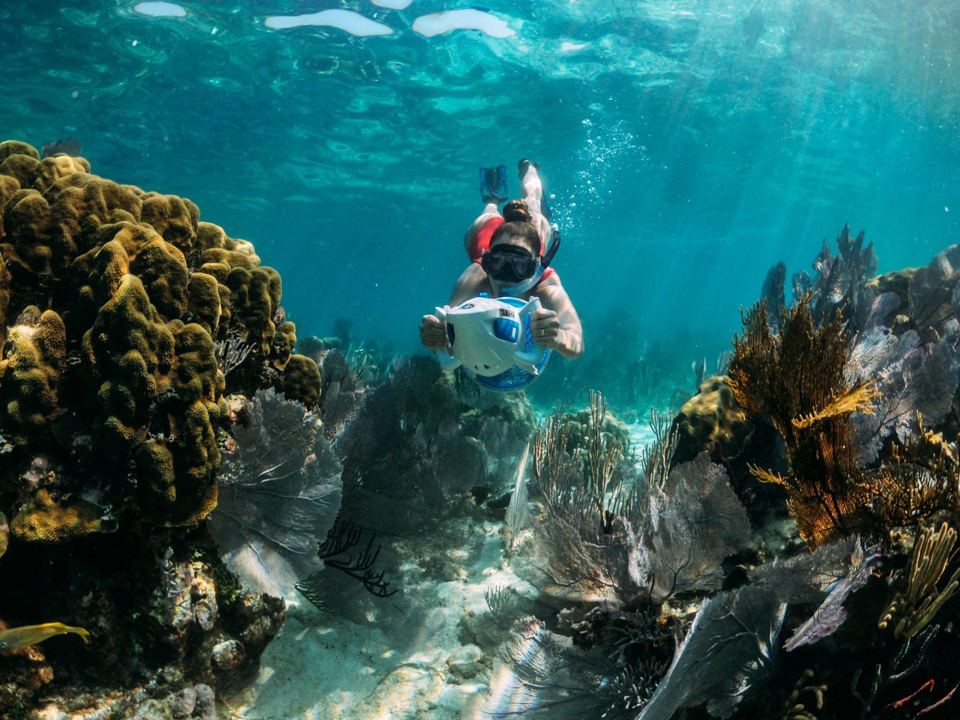 underwater Ray Caye snorkel