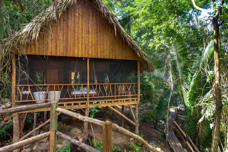premier treehouse jungle sweet songs lodge muyono belize