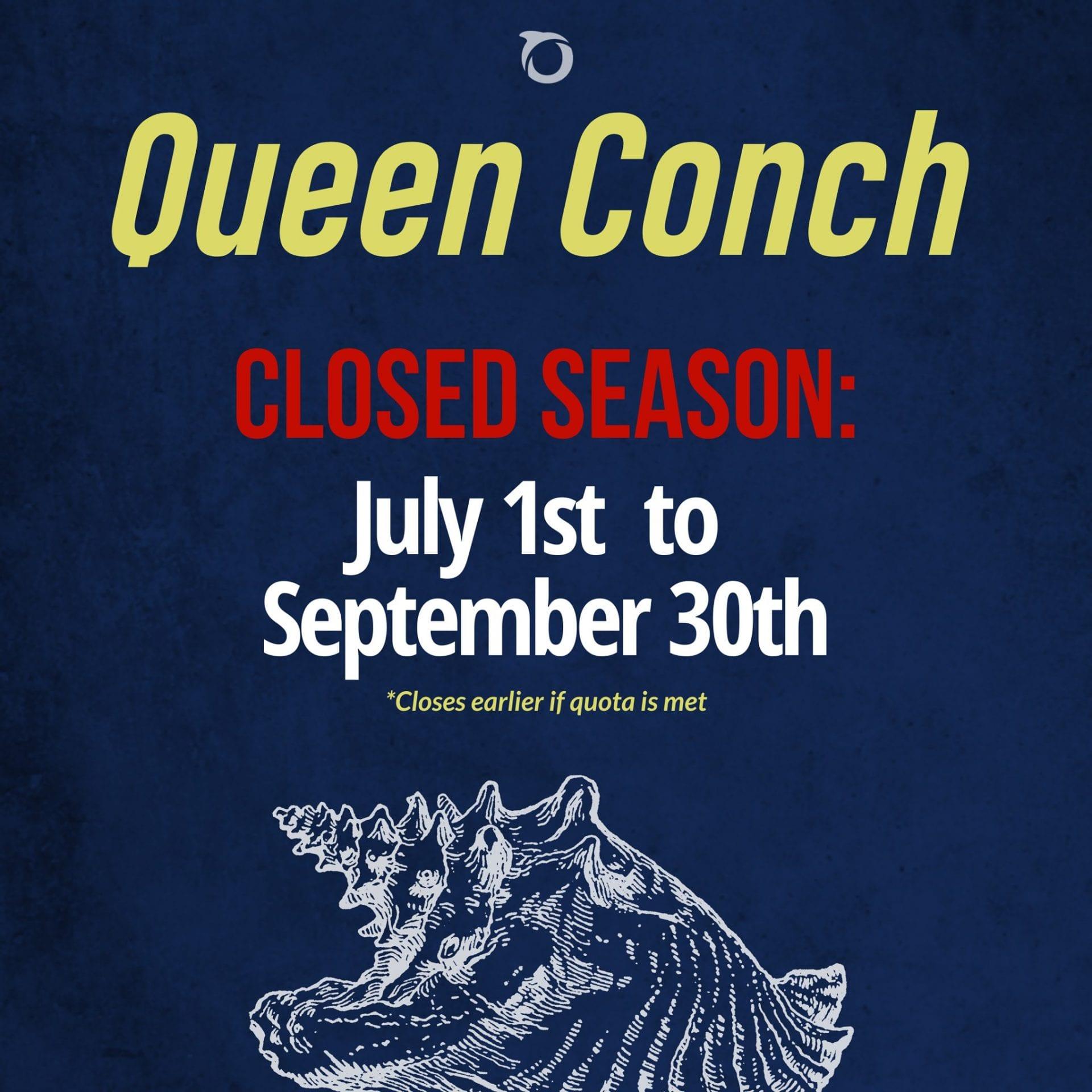 conch season quote