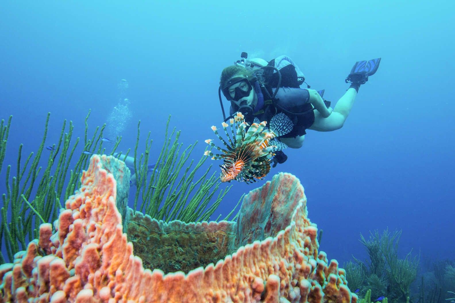 lionfish hunting scuba dive barrier reef belize DOUGLAS KLUG:GETTY IMAGES