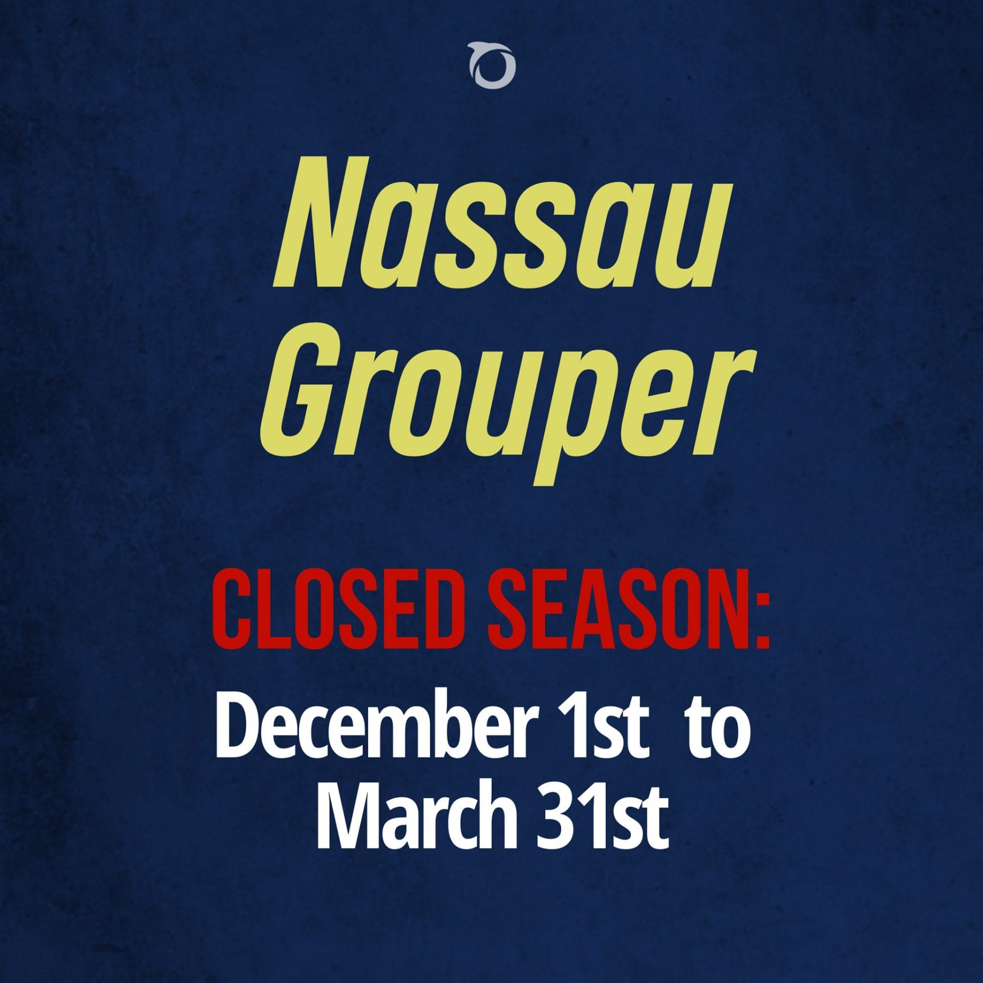 nassau grouper season