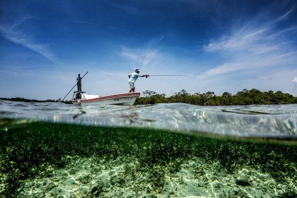 Fly Fishing Punta Gorda belize copal