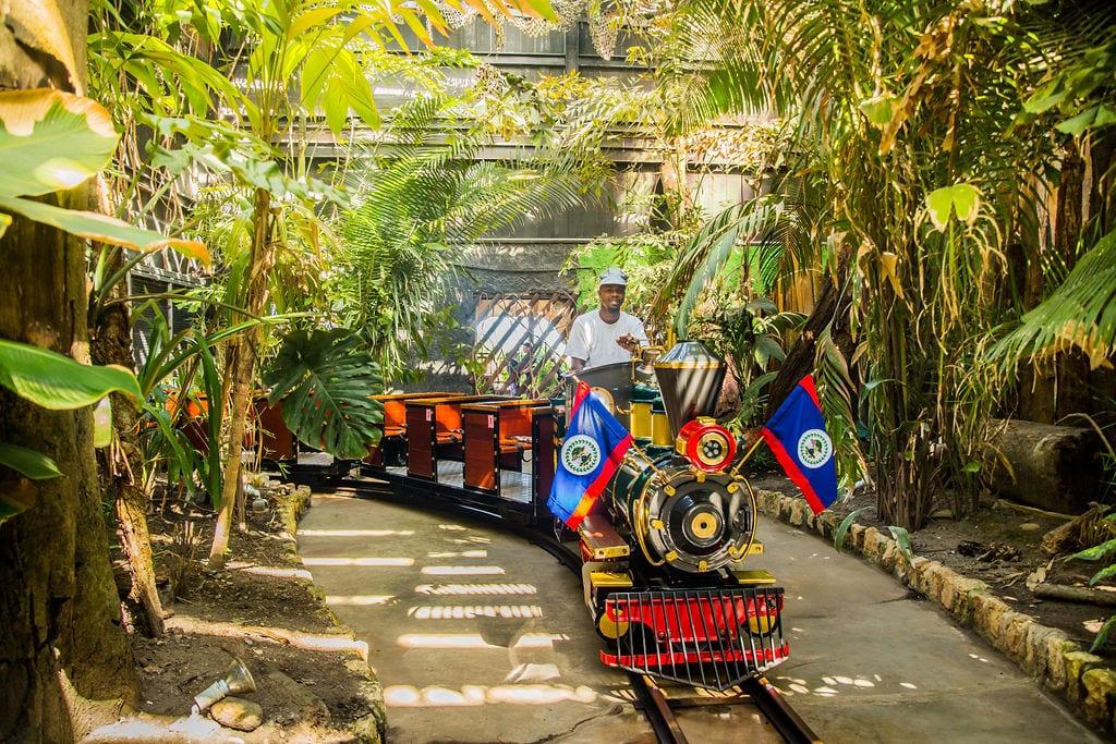 old belize train ride city