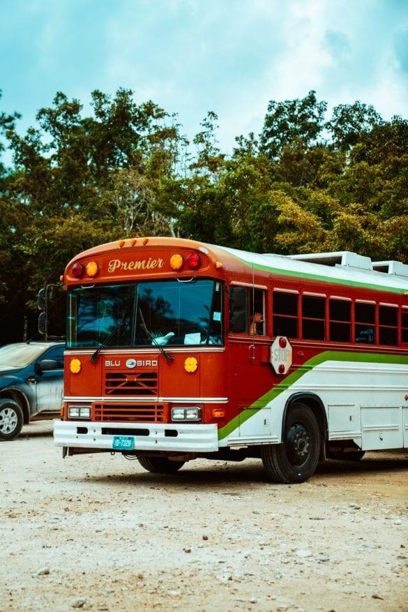 belize bus public transport