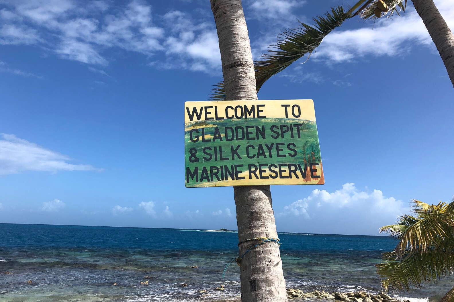 Gladden Spit and Silk Cayes Marine Reserve in Belize | DIANA WILSON:SHUTTERSTOCK