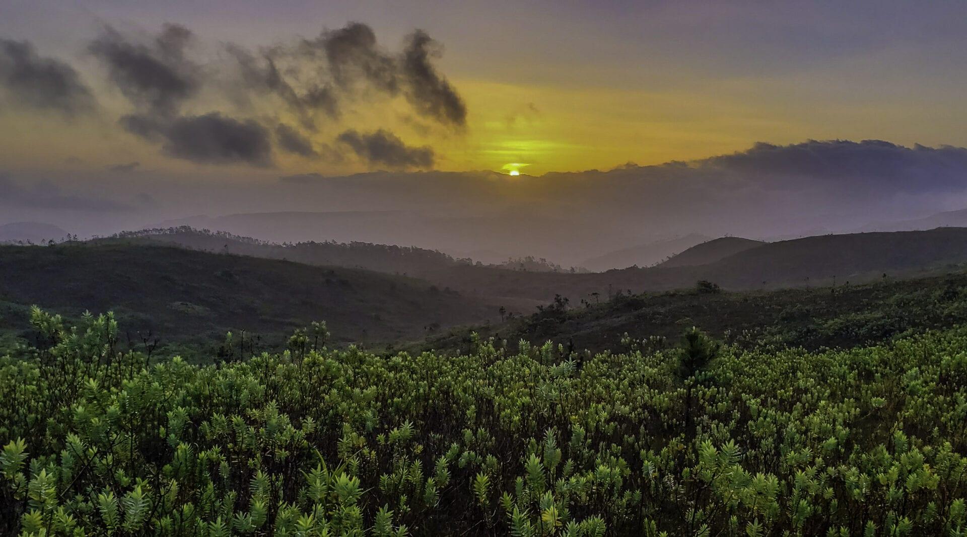 Sunrise Baldy Beacon by Roni Martinez-cayo-belize
