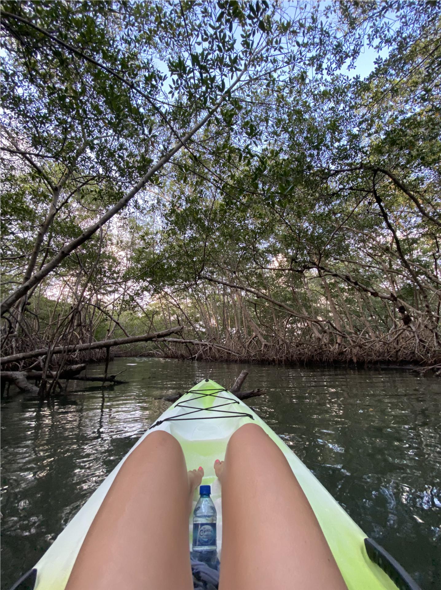naia-kayaking-placencia
